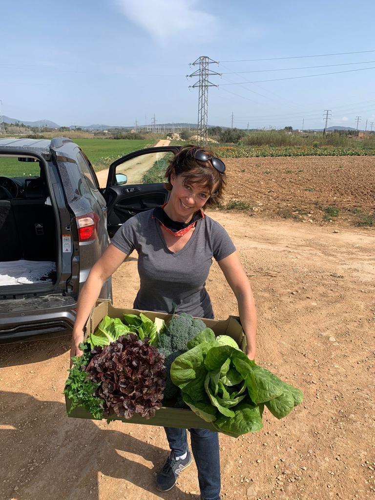 Nicky Neumann cosecha con diligencia frutas y verduras para apoyar aún más a las organizaciones de ayuda.