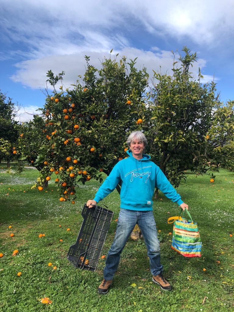 Tom Mardorf cosechando para el banco de alimentos de Santa Ponsa