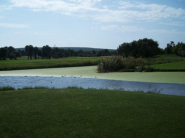 Campo de golf Mallorca