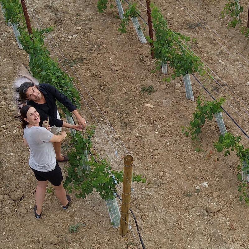 La pareja Grahe financia su sueño de ser un viticultor en Mallorca con ideas innovadoras. Imagen: Alexandra y Sören Grahe