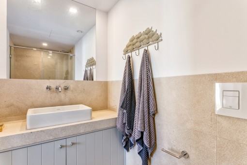 Otro baño con ducha