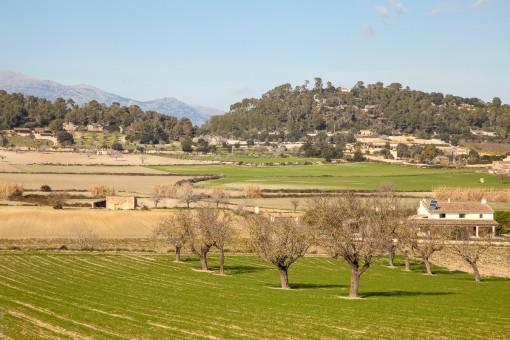 Vistas de los campos vecinos