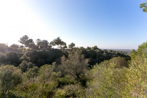 Terreno grande con vistas panorámicas en Puntiro