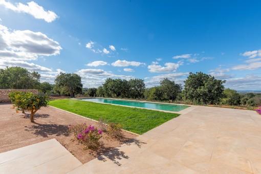Terraza soleada de la propiedad