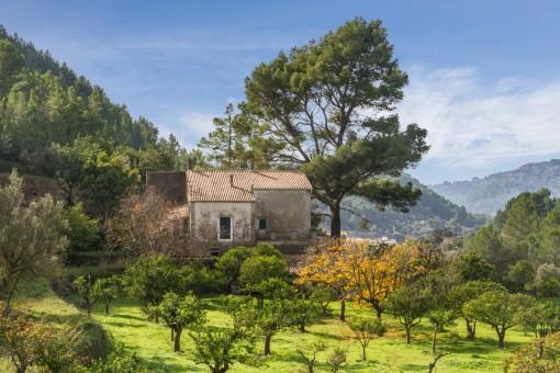 Finca de más de 25 hectáreas con casa señorial a renovar