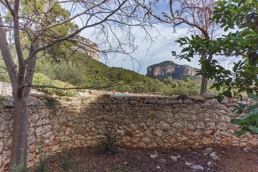 Jardín con muralla de piedras