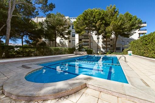 Apartamentos en Playa de Palma