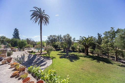 Jardín mediterráneo muy cuidado