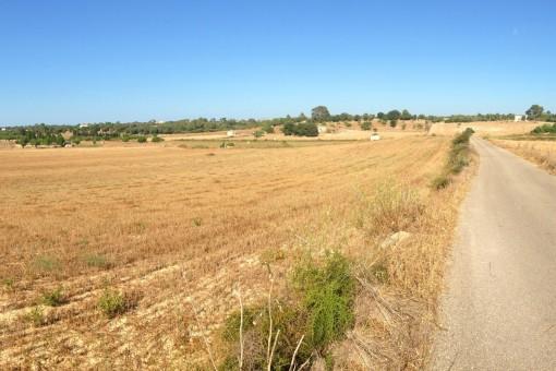 Ubicación rural