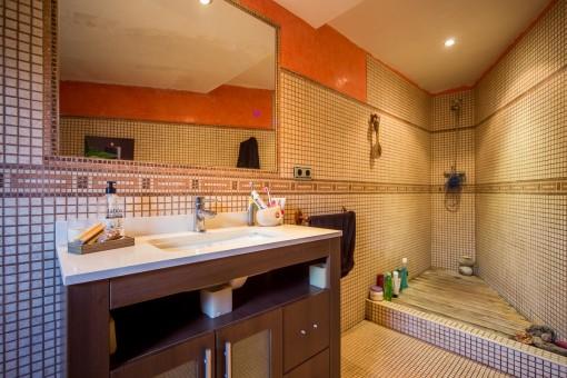 Baño con ducha pequeña