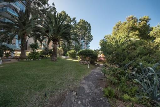 Jardín mediterráneo comunitario