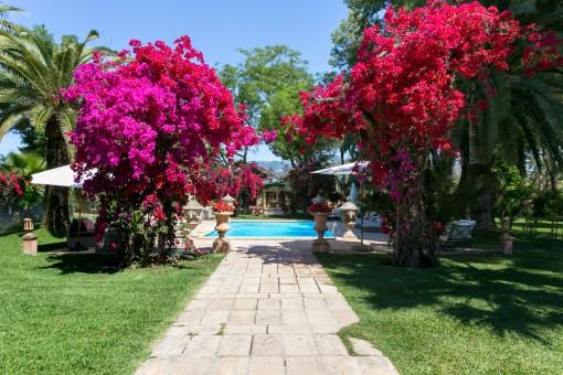Área de piscina y hermoso jardín