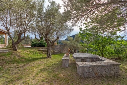 Jardín mallorquin