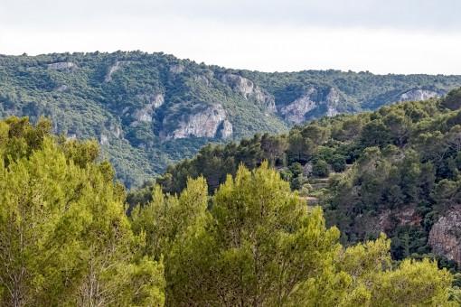 Vistas a las montañas desde la finca