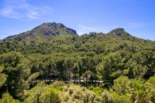 Vistas a al montaña preciosas