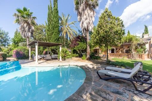 Piscina rodeada del jardín mediterráneo