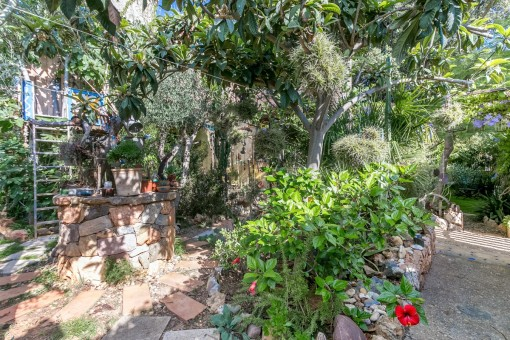Jardín mediterráneo con pozo