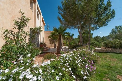 Bonita zona de entrada con plantas mediterráneas