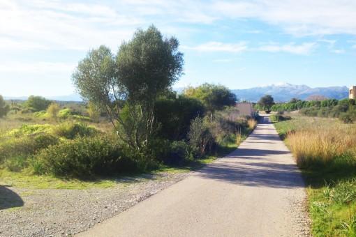 Una vía terrestre es la frontera natural entre los terrenos