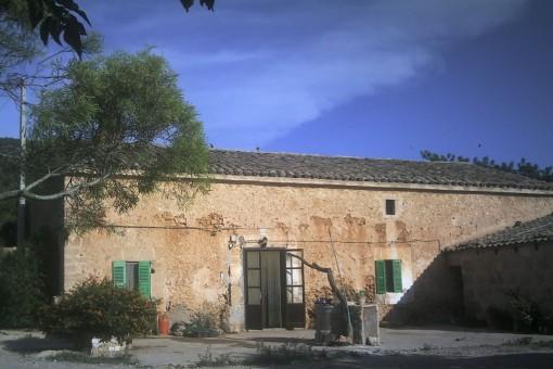 Solar en Santa Eugenia