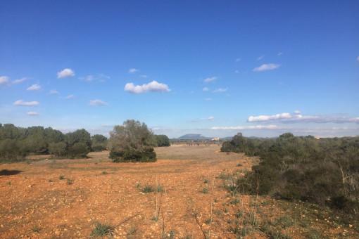 Terreno de finca en una ubicación tranquila cerca de Cala Pi