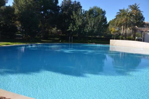 Hermosa zona de piscina comunitaria