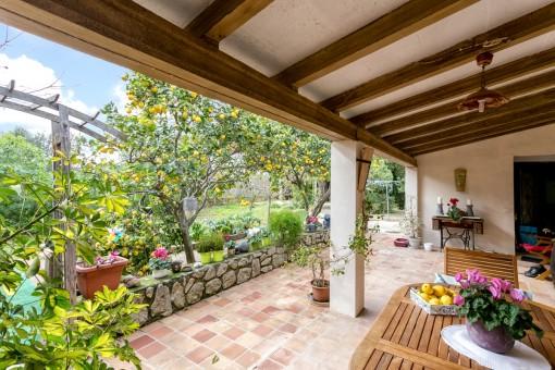 Terraza cubierta con vistas al jardín idílico con limoneros