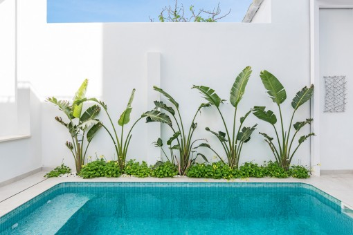 Maravillosa piscina con plantas verdes