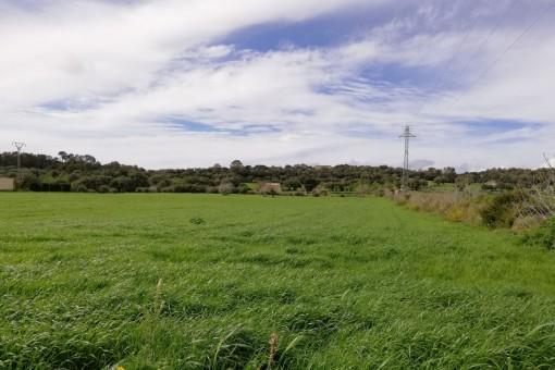 El terreno ofrece hermosas vistas al paisaje