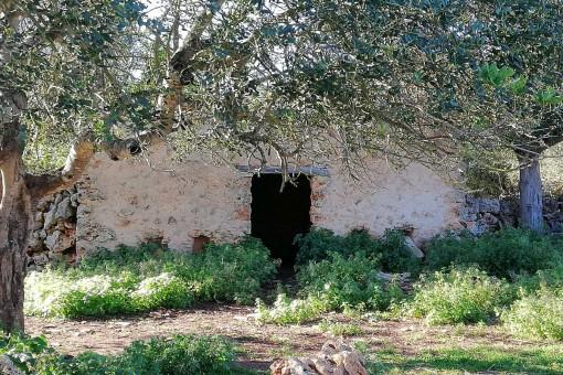 Edificio antiguo con pared de piedra natural