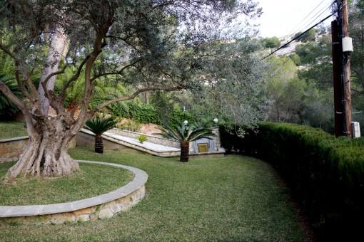 Jardín delantero de la casa