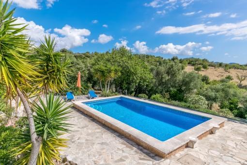La preciosa piscina está rodeada por un paisaje de ensueño