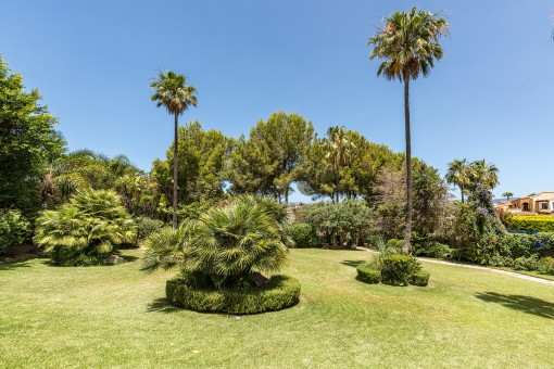 Grande jardín verde