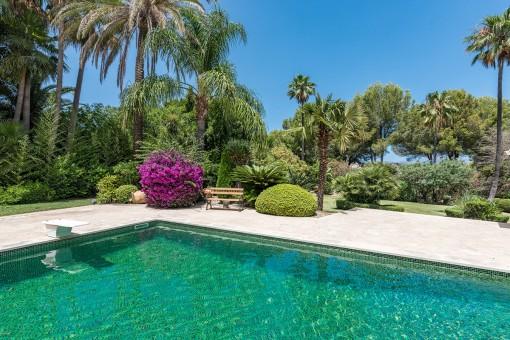 Vistas a la piscina encantadora