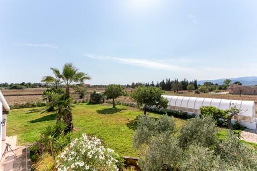 Jardín mediterráneo con palmeras