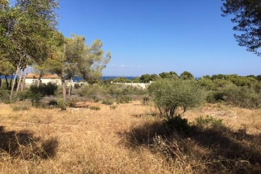 Solar en Sol de Mallorca