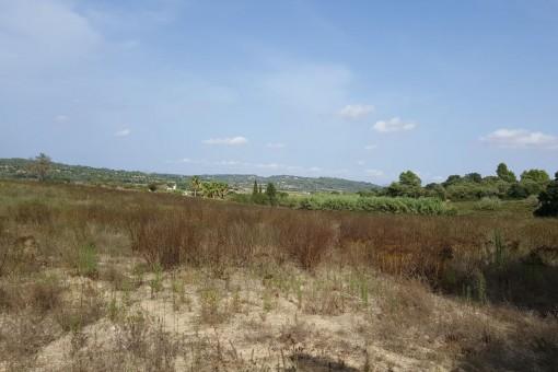 El tereno tiene una ubicación céntrica a la orilla del pueblo de Porreres