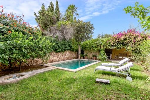 Jardín maravilloso y verde con piscina