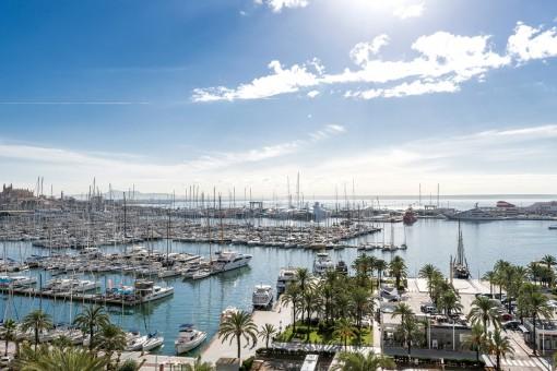 Magníficas vistas al puerto