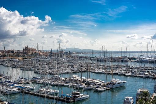 Maravillosas vistas al puerto y a la catedral