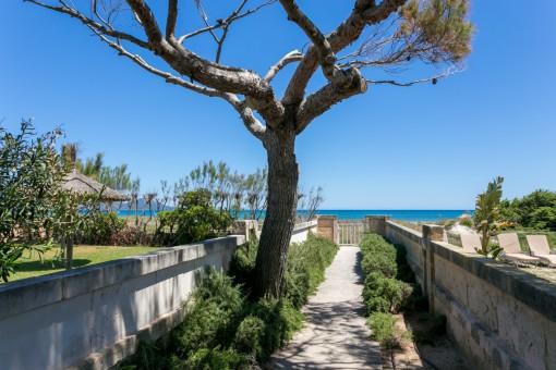 Apartamento en Playa de Muro