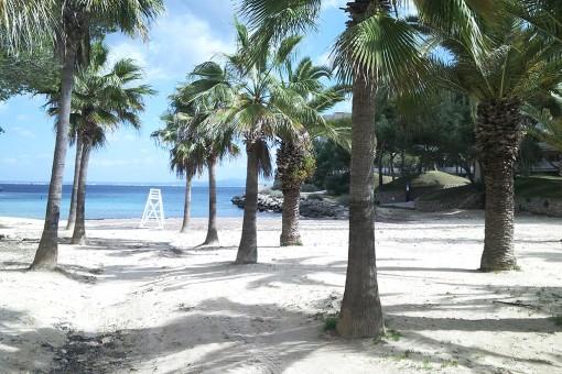 Sand Strand 5 Minuten entfernt