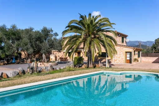 Espaciosa área de piscina con palmeras