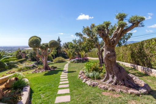Jardín encantador