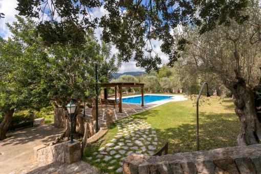 Jardín idílico con olivos
