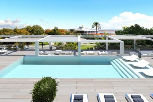 Área de piscina soleada con hamacas