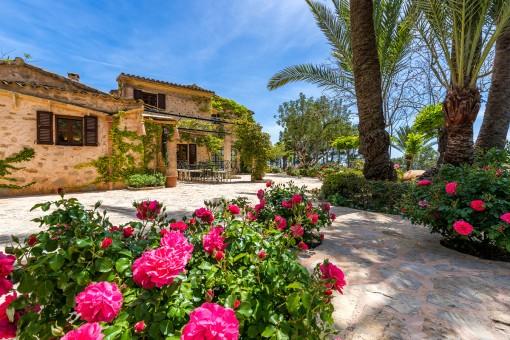Finca impresionante y mediterránea con jardín y piscina en Son Macià