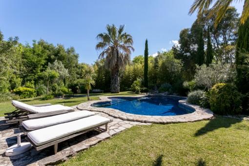 Área de piscina con hamacas