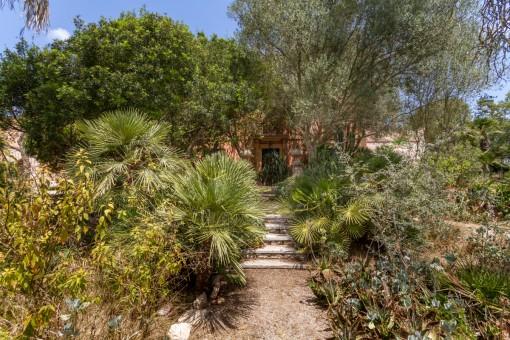 Marvilloso jardín exuberante