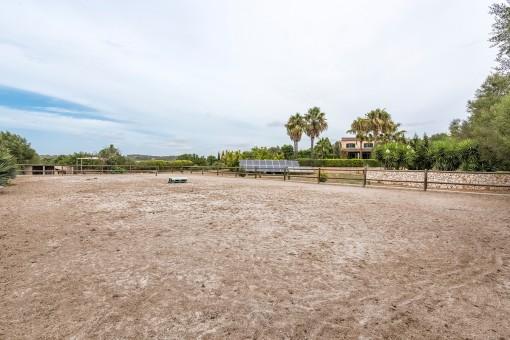 Amplio espacio para caballos